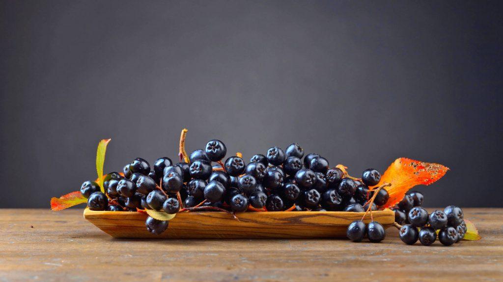 Spoznajte blahodarné účinky arónie a chutné tipy, ako ju využiť v kuchyni