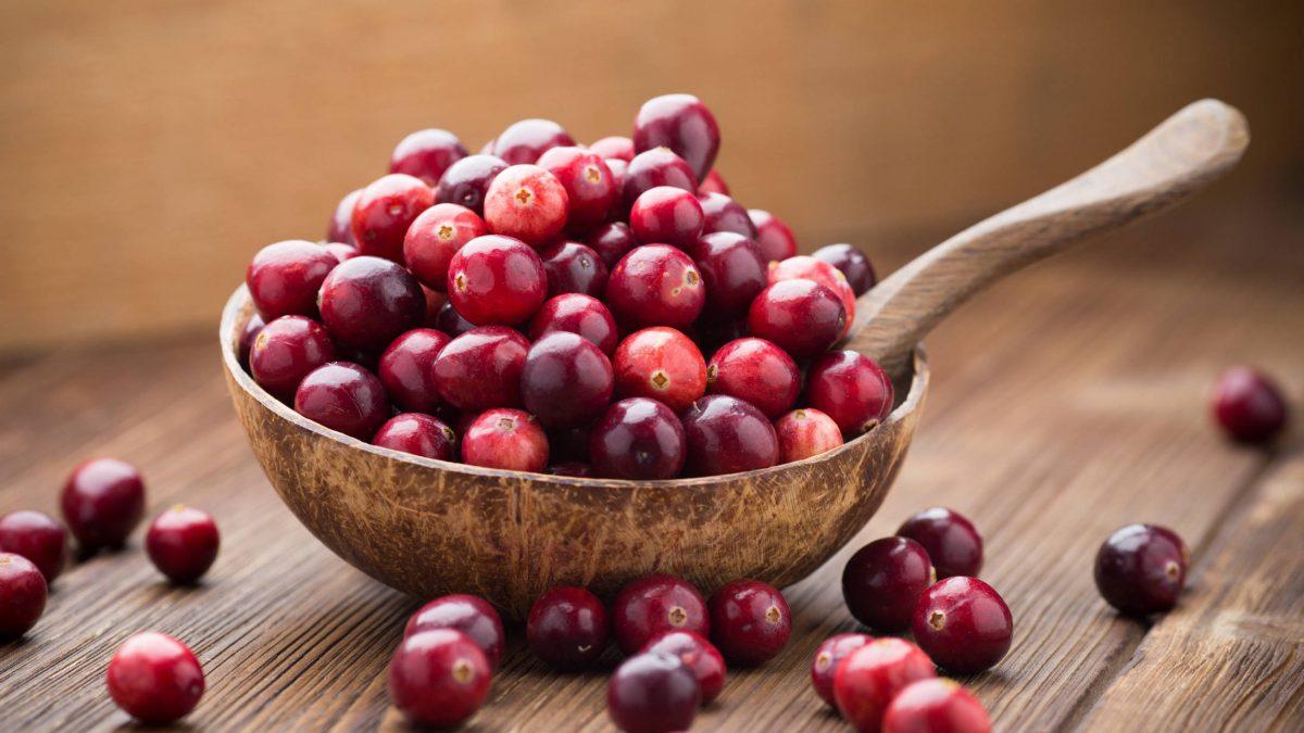 Liečivé účinky brusnice, recepty a pestovanie brusnice